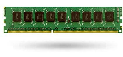 8GB ECC Ram für Synology RS3614xs RS3413xs, RS10613xs